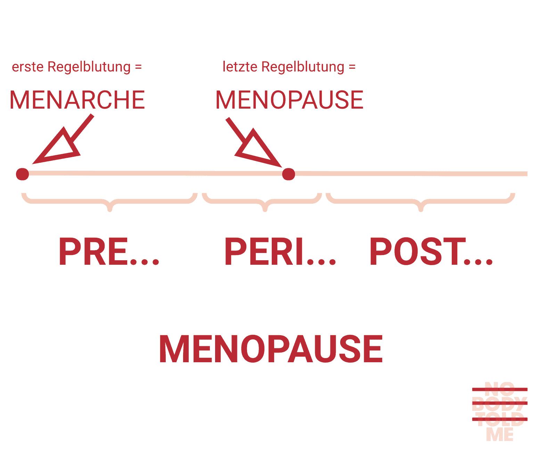 Phasen der Menopause: Perimenopause, Menopause, Postmenopause. Wir sind in den Wechseljahren, wenn unsere Regelblutung mindestens 12 Monate ausbleibt